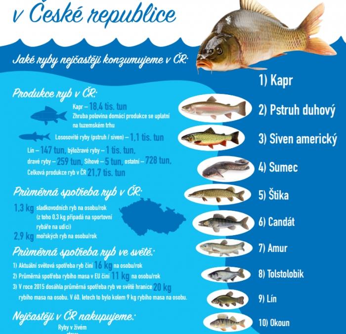 Zrozeno v EU - Češi by měli konzumovat více sladkovodních a mořských ryb